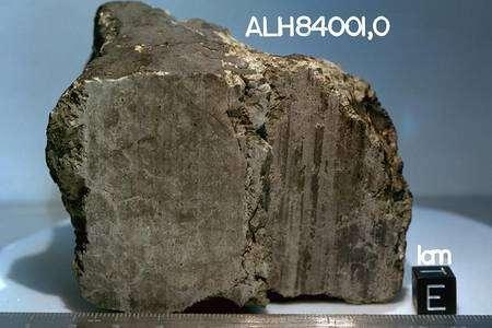 La météorite ALH84001. © Nasa-Caltech