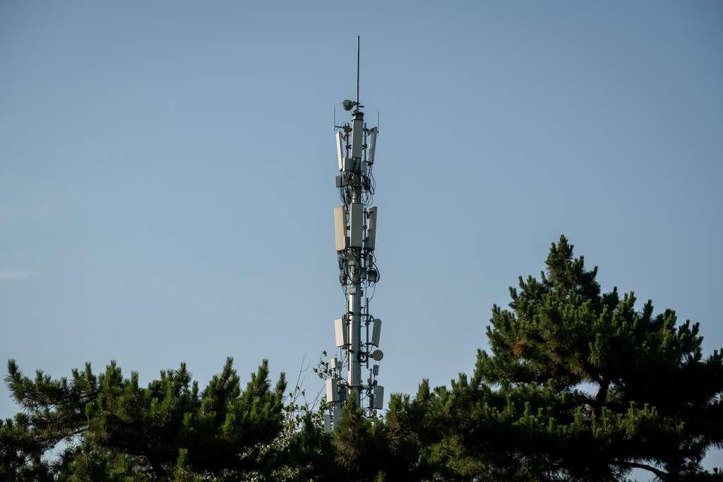 Sur les 26 pays étudiés, 21 ont déjà développé la 5G. © Nicoles Asfouri, AFP