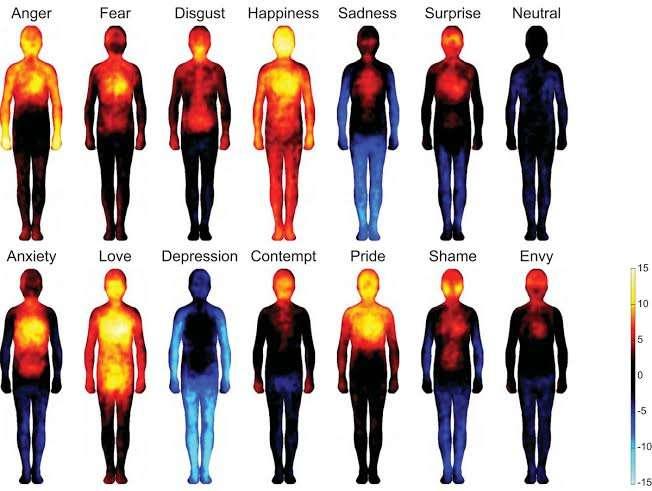 Les émotions sont associées à différents schémas d'émotion corporelle. De droite à gauche et de haut en bas : colère, peur, dégoût, joie, tristesse, surprise, neutre, anxiété, amour, déprime, mépris, fierté, honte, envie. Les couleurs représentent l'activation plus ou moins forte des régions du corps: de peu active (bleu clair) à très active (jaune). © Lauri Nummenmaa et al., Pnas
