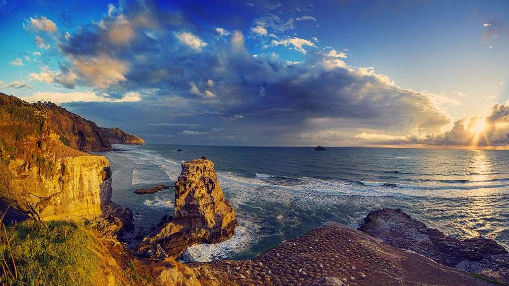 La beauté sauvage d'une plage de la Nouvelle-Zélande