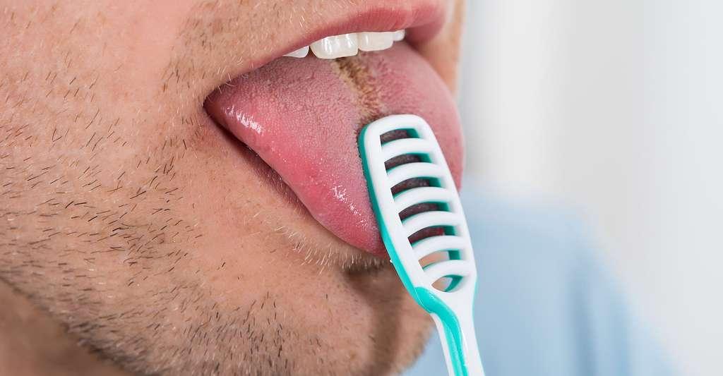 Lors du brossage des dents, il ne faut pas oublier la langue. © Andrey Popov, Fotolia