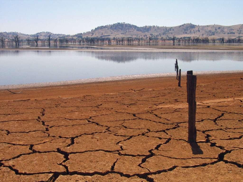 Le sol asséché près du lac Hume, au sud-est de l'Australie. © UNSW