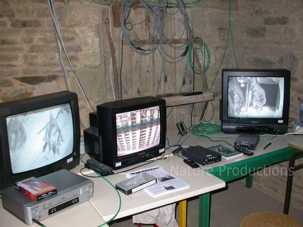 Pascal Provost a implanté une régie dans la crypte afin de mettre les chauves-souris sous haute surveillance. Grâce à cet équipement, il a notamment pu assister à une naissance. © Pascal Provost, DR