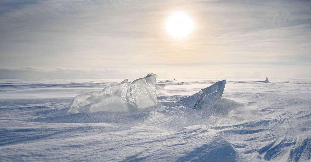 Des carottages réalisés dans les calottes de glace permettent de mieux comprendre le climat de la Terre. Ici, un paysage de glace. © River34, Shutterstock