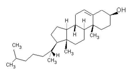Molécule de cholestérol. © pedagogie.ac-montpellier.fr