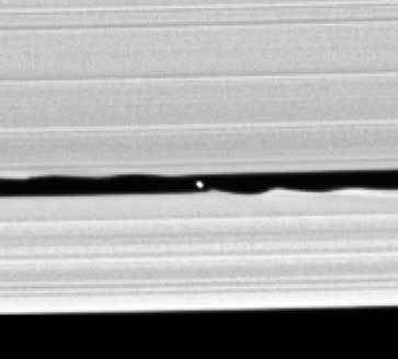 Les bords ondulés provoqués par l'attraction gravitationnelle du satellite de Saturne S/2005 S1 sont plus prononcés à mesure que la lune est proche. © Nasa