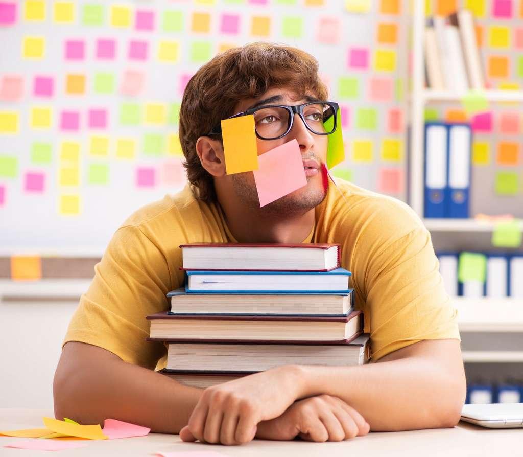 Les révisions du bac doivent se faire dans de bonnes conditions de travail et d'organisation. © Elnur, Adobe Stock