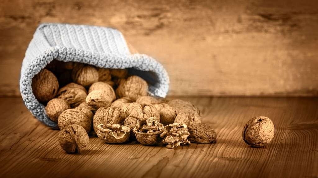 La noix, un fruit à écale hors du commun