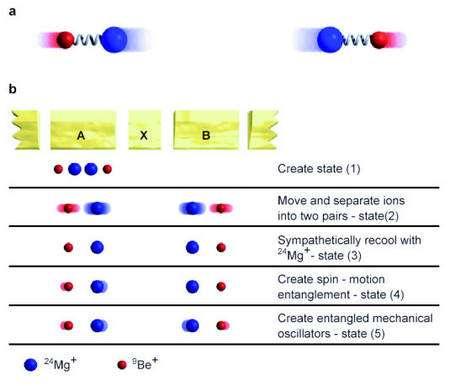 Schéma montrant les étapes de l'expérience des chercheus du Nist. Une explication détaillée est donnée dans le texte. Crédit : J. D. Jost, J. P. Home, J. M. Amini, D. Hanneke, R. Ozeri, C. Langer, J. J. Bollinger, D. Leibfried, D. J. Wineland