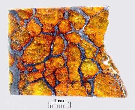 Partez à la découverte des météorites. © DR
