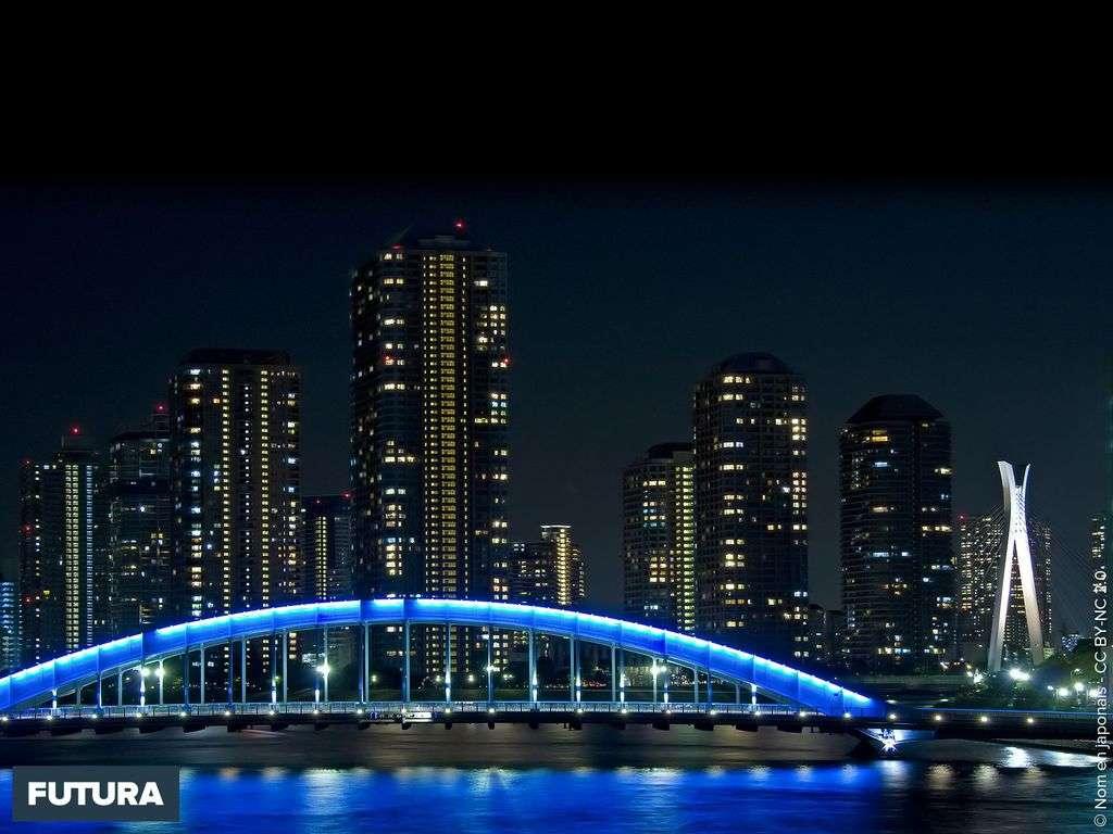 Le pont Eitai Tokyo - Japon