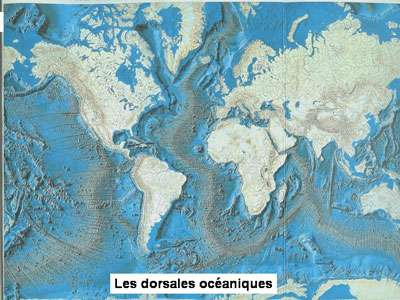 Les plaques tectoniques sont propices à l'apparition de molécules organiques. © DR