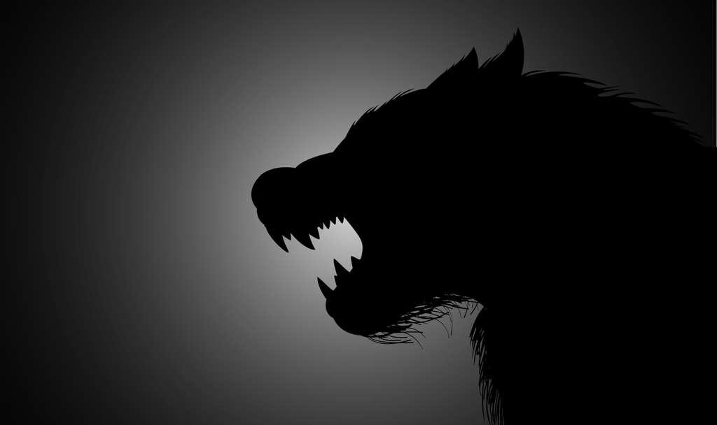 Au Moyen Âge, le phénomène des loups-garous était attribué à une possession démoniaque. © rudall30, Adobe Stock