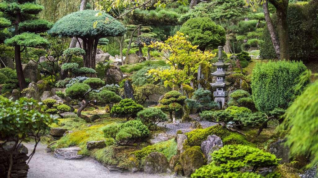 Le jardin japonais : la représentation du monde