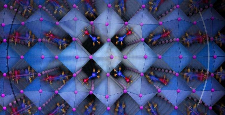 Des chercheurs de l'université de Columbia ont levé le voile sur les mécanismes qui président aux performances des cellules photovoltaïques à base de pérovskites hybrides. © Nicoletta Barolini, Columbia