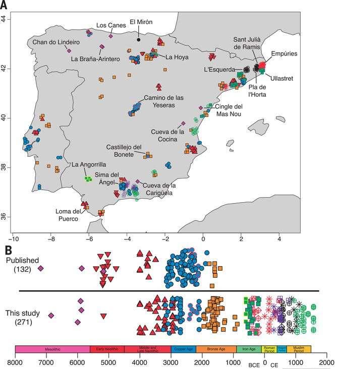 Carte illustrant la diversité génétique de la péninsule ibérique au fil des vagues migratoires (les chasseurs-cueilleurs ibériques sont en rouge, les Yamnaya sont indiqués en bleu) et les échantillons utilisés dans l'étude. © Iñigo Olalde et al, Science, 2019
