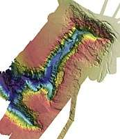 Le Canyon de Perth est l'un des éléments écologiques clefs étudiés par le Csiro. C'est un élément unique et extraordinaire du plateau continental australien. © Csiro