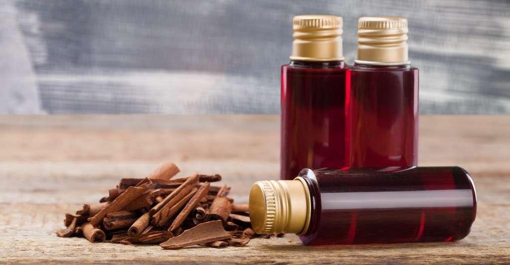 Le bois de santal aurait la propriété de favoriser la transformation des cellules folliculaires en cheveux. Pourquoi ne pas l'inclure à la formulation de nos shampoings ? © marilyn barbone, Fotolia