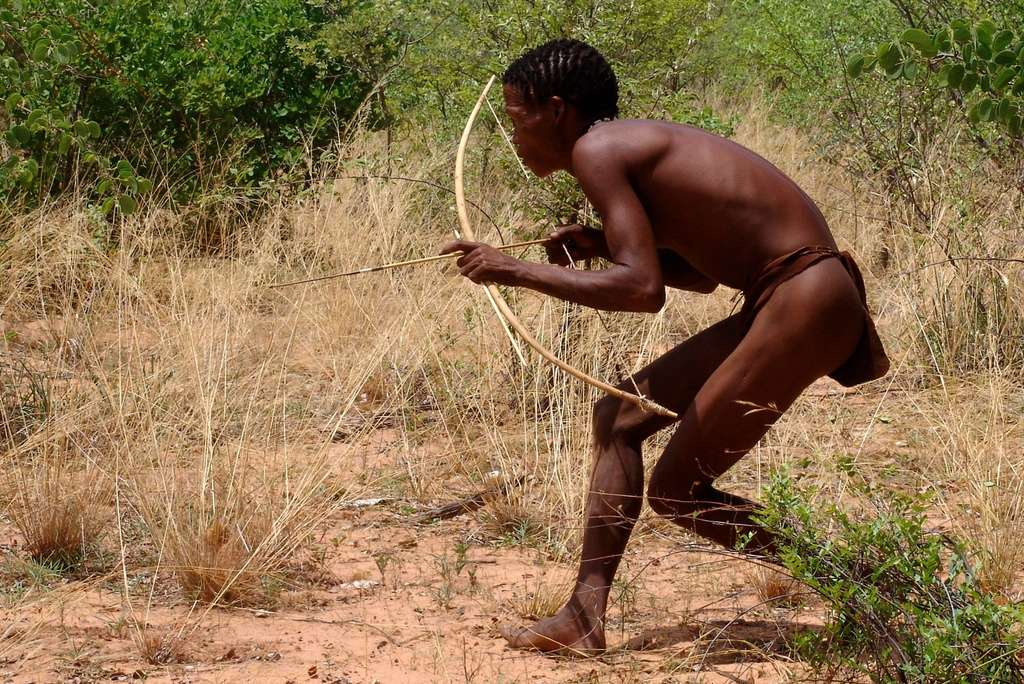 Le peuple bochiman, dans le désert du Kalahari, vit toujours de la chasse et de la cueillette. Si l'hypothèse de Crabtree est vérifiée, peut-être pourrait-on prouver que les Bochimans sont plus intelligents que les membres de nos sociétés vivant de l'agriculture et de l'élevage dans des groupes humains de forte densité... © Charles Roffey, Fotopédia, cc by nc sa 2.0