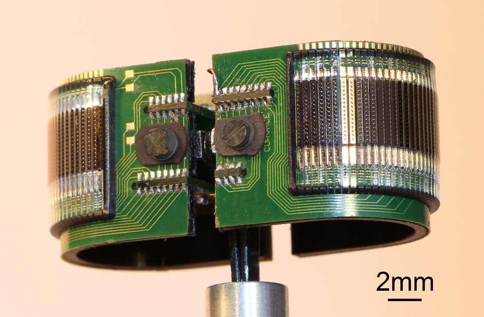 Capteur CurvACE cylindrique (champ de vision : 360 x 60°). © Fabien expert, DR