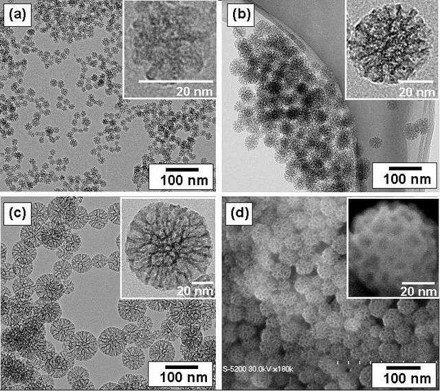 Les nanoparticules offrent des perspectives prometteuses dans de nombreux domaines. Dans le cas de la régénération osseuse, elles peuvent être utilisées à la fois pour leurs propriétés mécaniques et pour leur capacité à diffuser un traitement ciblé. © Domaine public