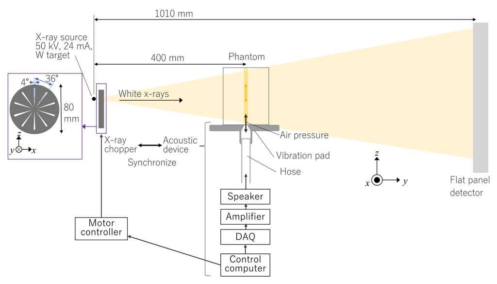 Schéma de fonctionnement de l'élastographie à rayons X. L'objet (phantom) est mis en vibration avec une onde acoustique, puis un rayonnement mesure la vitesse de déplacement des particules en vibration, enregistrée sous forme d'image 2D par un détecteur. © Chika Kamezawa et al., Appl. Phys. Express, 2020