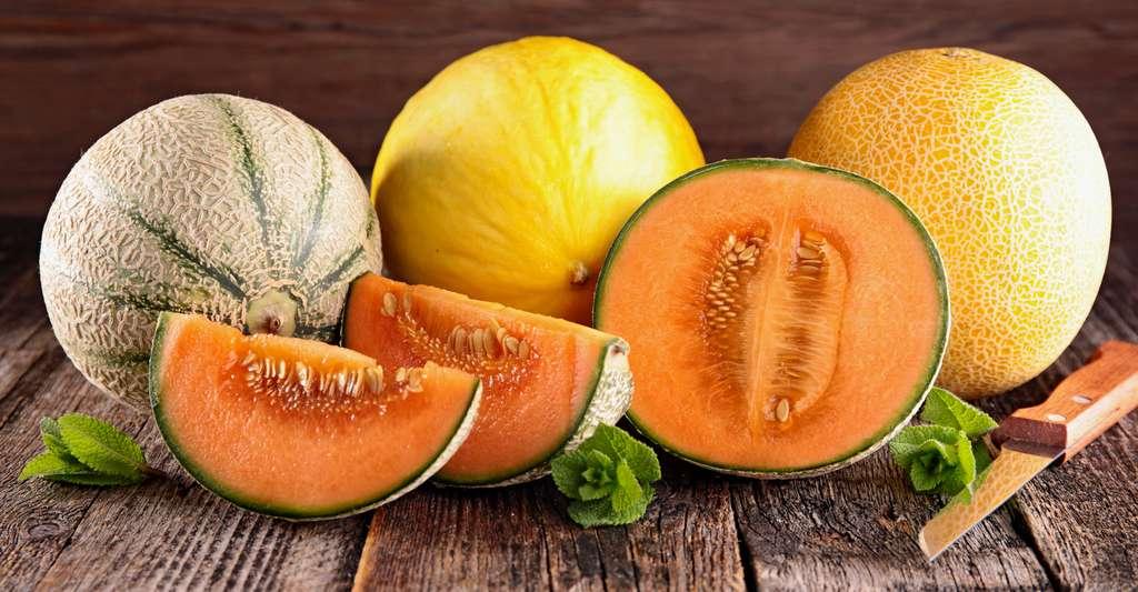 Le melon est un délicieux fruit frais et sucré. Sa saison ? L'été. © Margouillat, Shutterstock