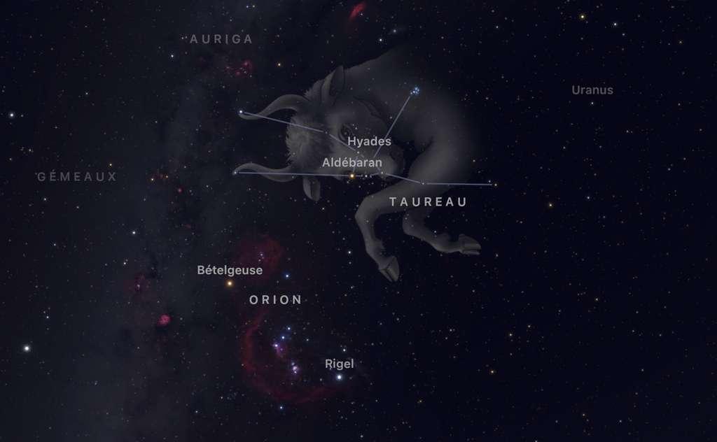 Le radiant de la pluie d'étoiles filantes des Taurides nord se situe dans le Taureau,juste à côté du bel amas d'étoiles des Pléiades. © SkyGuide