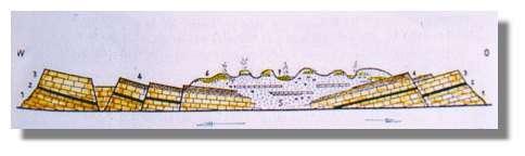 Coupe schématique à travers l'Islande (d'après Bardarson modifié) 1,3 et 4 = basaltes des plateaux tertiaires, 2 = dépôts sédimentaires intercalaires, 5 = palagonites, 6 & 7 = volcanisme du Quaternaire supérieur et actuel - Remarquer le pendage des basaltes des plateaux vers le graben médiam