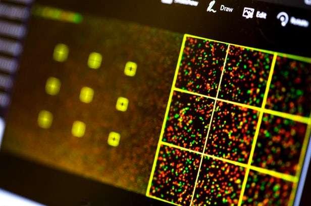 Cette capture d'écran est extraite du logiciel de séquençage d'ADN dans lequel les chercheurs de l'université de Washington ont inséré un malware. © Dennis Wise, University of Washington