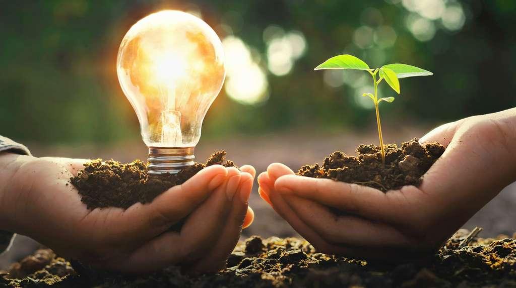 Sur un certificat électronique de Garantie d'Origine (GO) figurent entre autre, la source de l'énergie renouvelable, la date et le pays de production ou encore la puissance des installations. Une GO est valable un an. © lovelyday12, Fotolia