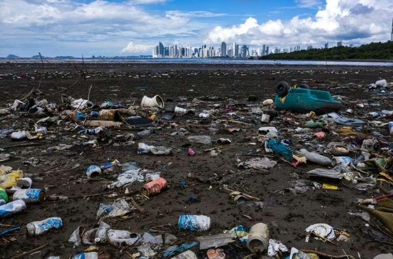 Des volontaires de la coalition ont collecté près d'un demi-million de déchets plastiques. © Luis Acosta, AFP