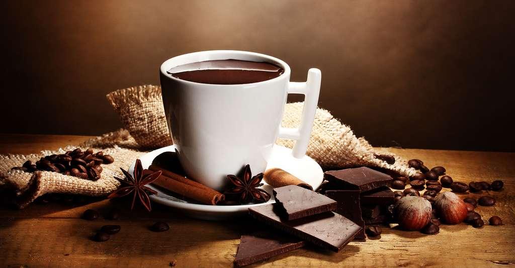 Le bon goût du chocolat avec le café. © Africa Studio, Shutterstock