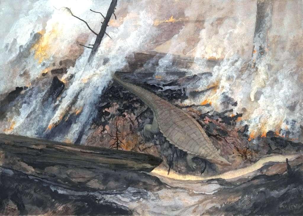 Un parent éloigné des crocodiles, l'aétosaure Typothorax, se faufile parmi les restes fumants d'un incendie dans la région de Ghost Ranch, Nouveau-Mexique, il y a environ 212 millions d'années. Ces reptiles étaient capables de résister aux changements environnementaux imprévisibles qui survenaient dans cette région proche de l'équateur tandis que les grands dinosaures herbivores ne le pouvaient pas. © Petrified Forest Museum Association/Doug Henderson