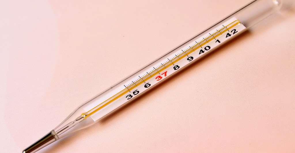 La mesure de la température du cadavre est réalisée sur les lieux du crime par le médecin légiste. © Gadini, DP
