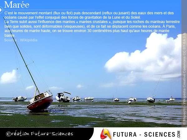 Le phénomène des marées