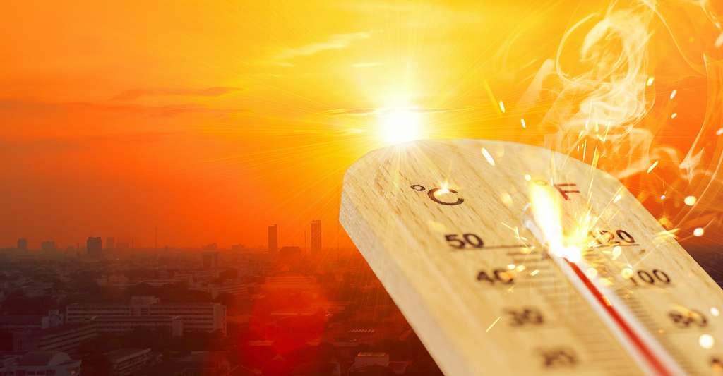 En 2006, une étude avait montré que les tardigrades en dormance pouvaient survivre à des températures allant jusqu'à 151 °C pendant une demi-heure. Les travaux des chercheurs de l'université de Copenhague (Danemark) montrent que le taux de survie des tardigrades diminue fortement plus la température est maintenue longtemps à un niveau élevé. L'été dernier, ceux qu'ils ont étudiés n'auraient probablement pas survécu aux épisodes de canicule que nous avons connus. © Korn V., Adobe Stock