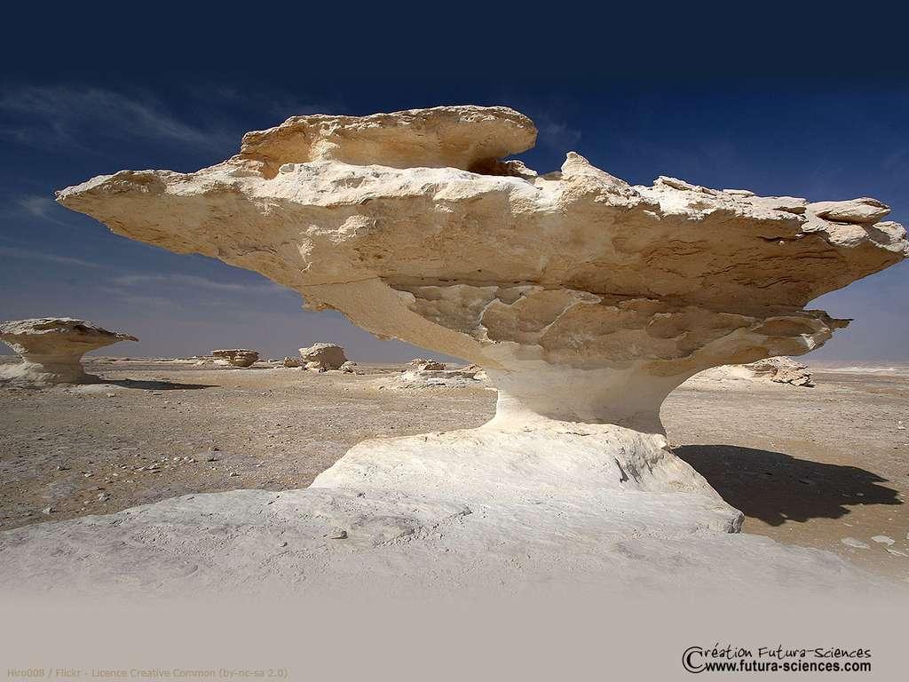 Sculpture du désert