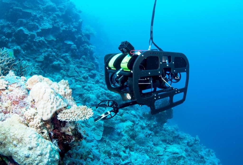 Un robot du Catlin Seaview Survey en train de prélever un échantillon sur la Grande Barrière de corail, au large de l'Australie. © Catlin Seaview Survey, Jayne Jenkins