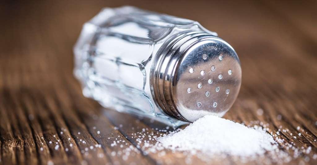 Le sel de table contient des ions sodium et des ions chlorure. © HandmadePictures, Shutterstock
