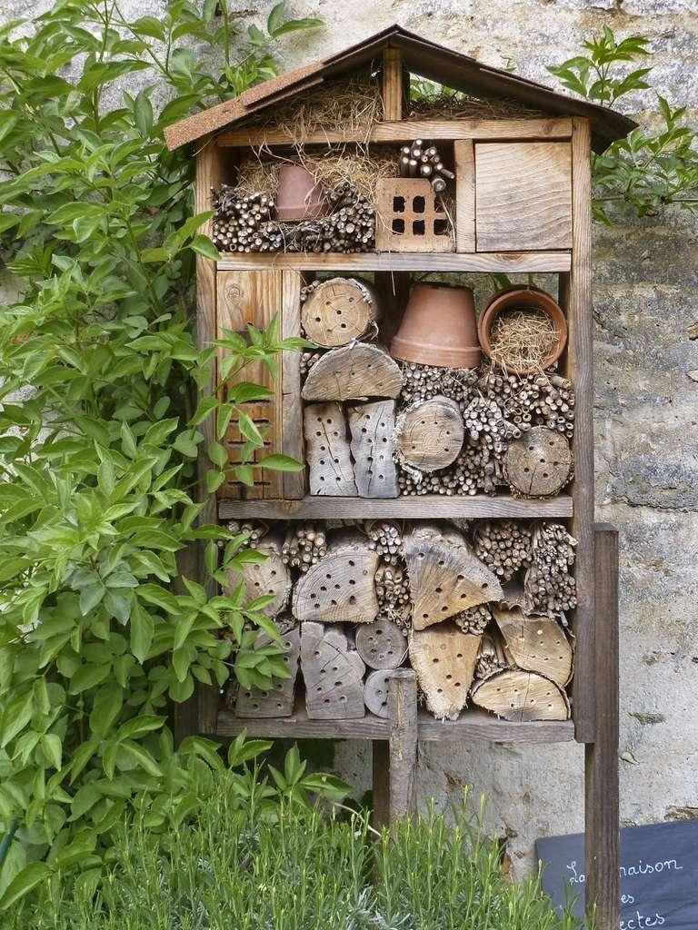 Un hôtel à insectes dans le potager de la propriété Caillebotte. © Ghislaine Laussel pour Futura
