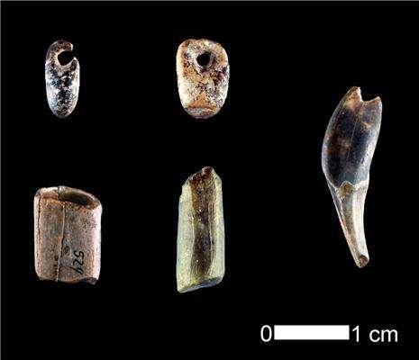 De très nombreux bijoux, tels que ces pendentifs, de la culture aurignacienne ont été trouvés dans la grotte de Geiβenklösterl, à proximité des instruments de musique et des ossements ayant fait l'objet d'une datation à haute résolution. © University of Tubingen