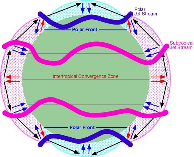 Les courants-jets dans les deux hémisphères se forment au niveau de la branche descendante des cellules de circulation atmosphérique. En rose, les courants-jets subtropicaux (subtropical jet streams). Ces vents sont générés au niveau de la branche descendante de la cellule de Hadley, qui distribue l'air de l'équateur (flèches rouges) vers les plus hautes latitudes. En bleu, les courants-jets des latitudes moyennes. Ces vents sont générés au niveau de la branche descendante de la cellule de Ferrel. © M. Pidwirny, Fundamentals of Physical Geography, 2006