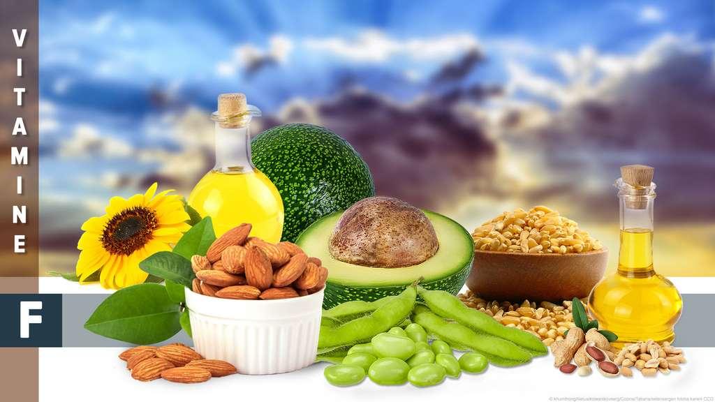 Les omégas-3 et 6, des acides gras indispensables