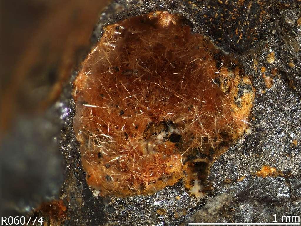 Un exemple de minéral anthropogénique : le néalite, l'une des nombreuses espèces issues des anciennes scories retrouvées dans les mines exploitées au cours de l'Antiquité, dans le site du massif du Laurion, en Grèce. © RRUFF