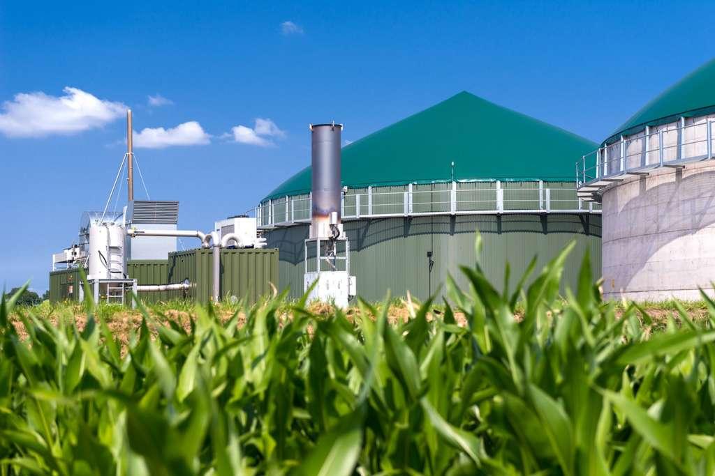 Le biogaz, obtenu à partir des déchets organique, peut produire de l'hydrogène vert. Ici, une installation de traitement et de production. © Wolfgang Jargstorff, Adobe Stock