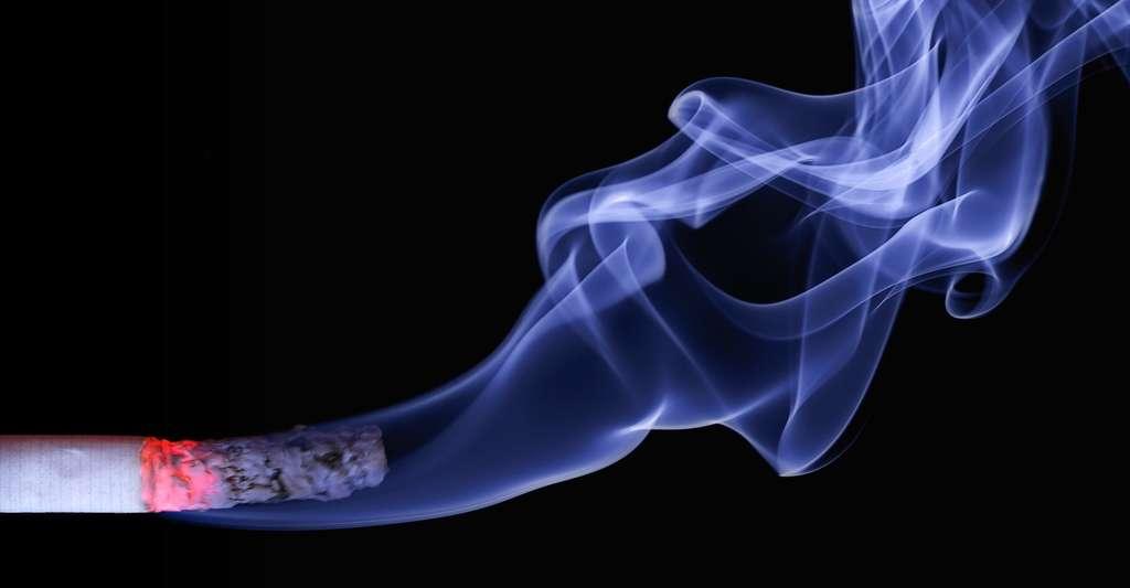 La fumée de cigarette est l'un des polluants de l'air de nos maisons le plus connu. © realworkhard, Pixabay, CC0 Creative Commons