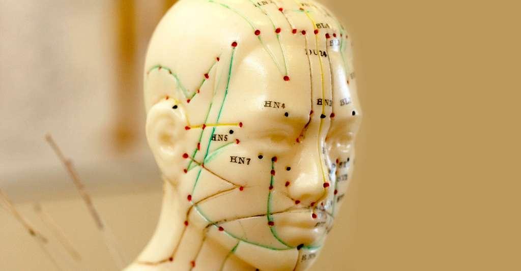 D'autres hypothèses ont été émises sur l'emploi de ces piles, comme produire un courant électrique à des fins d'acupuncture. © B.Corn - Shutterstock