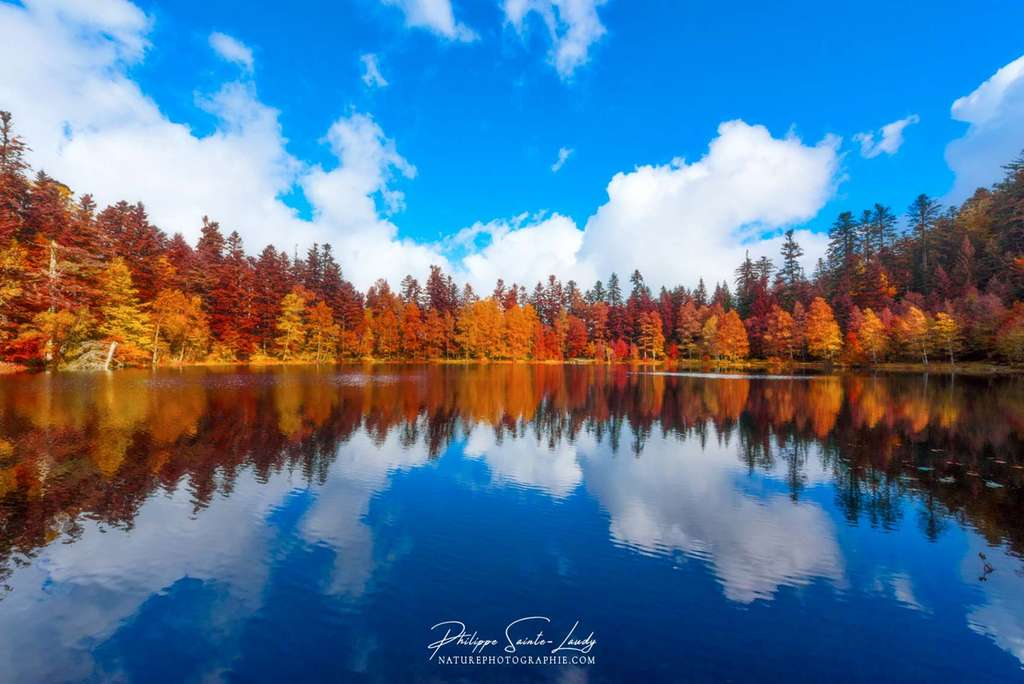 Reflets d'automne dans l'eau