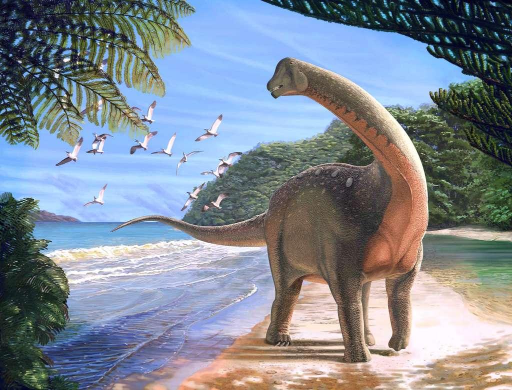 Illustration de Mansourasaurus shahinae découvert dans le Sahara égyptien. © Andrew McAfee, Carnegie Museum of Natural History